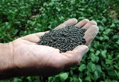 شراء Agricultural Fertilizer