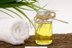 Ginger essential oils
