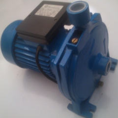 Mercury Water Pump