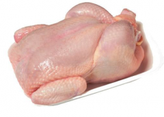 Whole broiler chicken HALAL